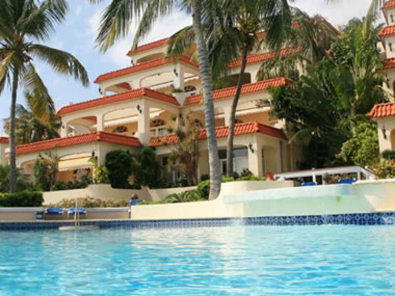 Royal Palm-Curacao